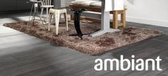 Ambiant – small