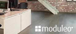 moduleo Designs Floors